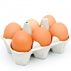 Bodychef - Eggs - image